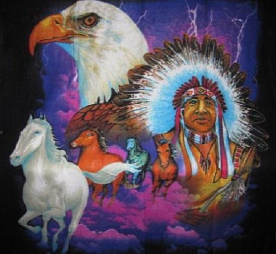 New Purple Sky Indian Chief Bald Eagle Horse Polar Fleece